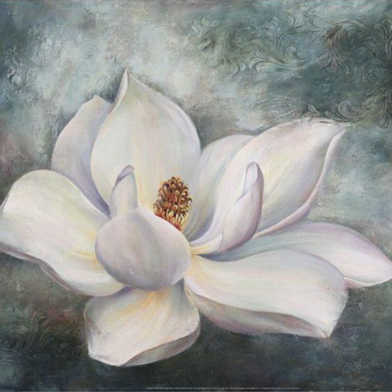 Magnolia_Blossom